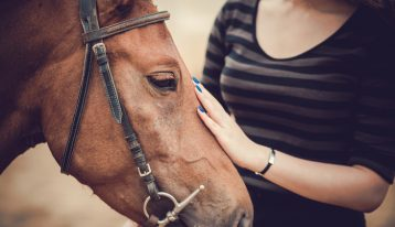 equine therapy for addiction treatment - woman petting a horse - ranch at dove tree