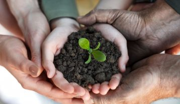 Overcoming Addiction: It's a Family-Focused Process - family hands holding soil and small plant