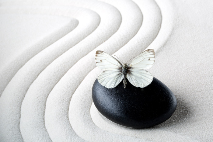 How to Care for Yourself as Your Loved One Struggles with Addiction - zen raked white sand with stone and butterfly white